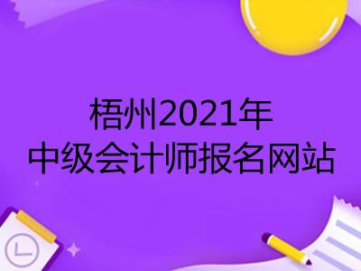 梧州2021年中级会计师报名网站是什么