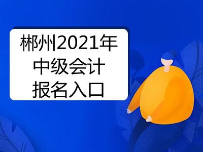 郴州2021年中级会计报名入口开通了吗